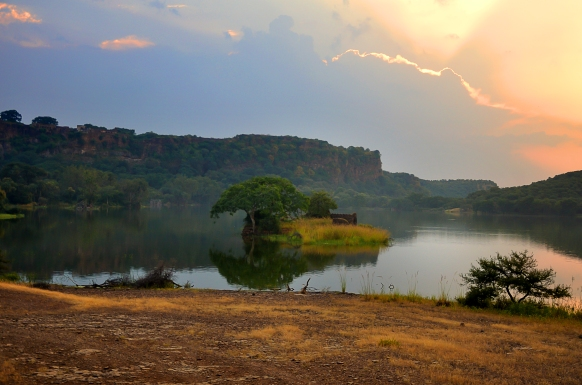Land of Fort and Tigers – Ranthambore National Park
