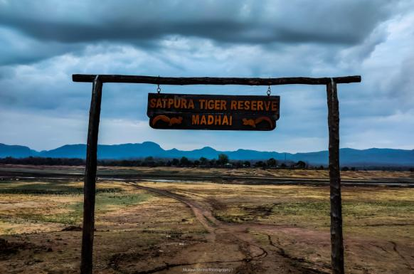 Satpura Safari